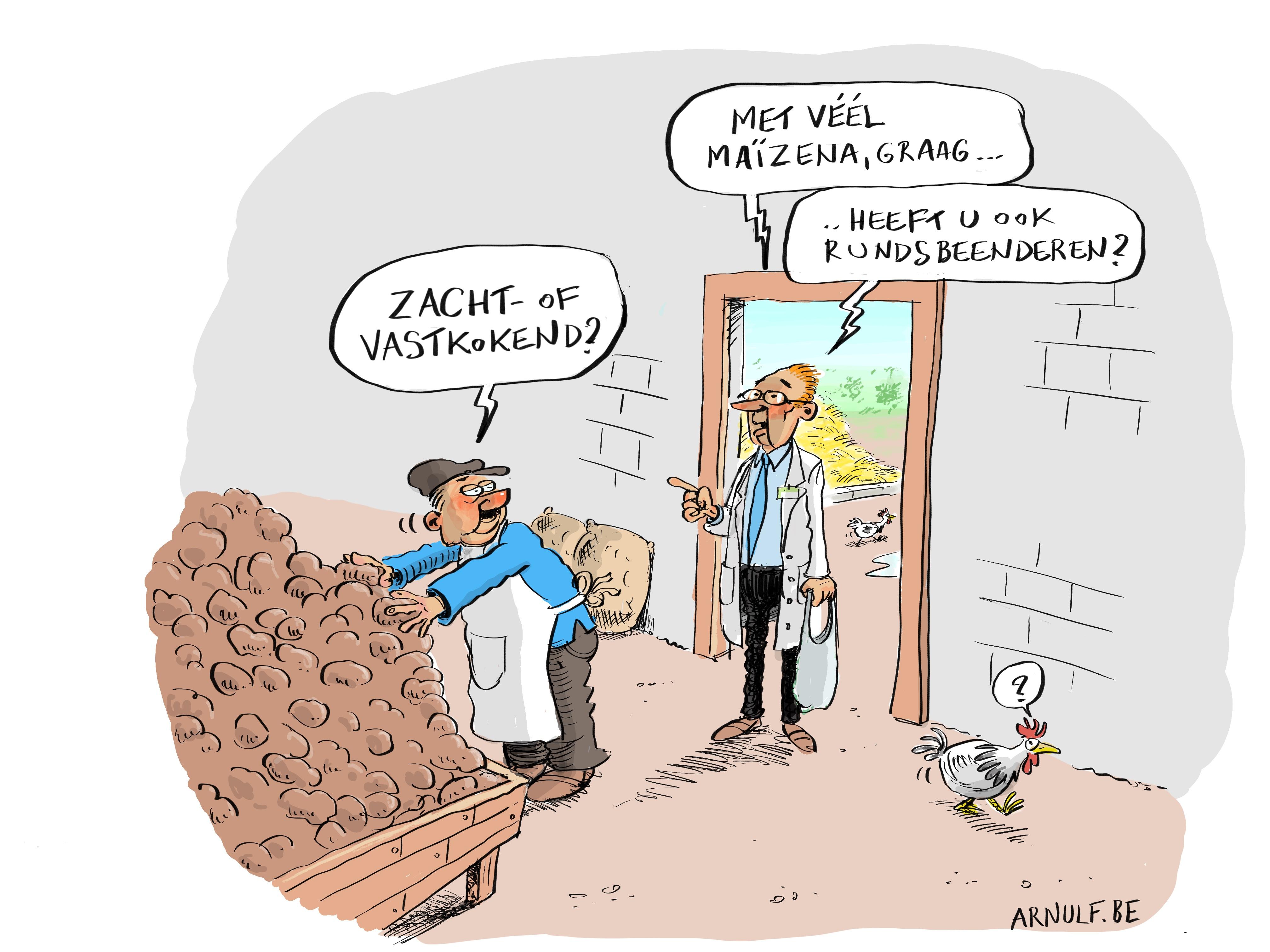 Bert Van den Bogerd